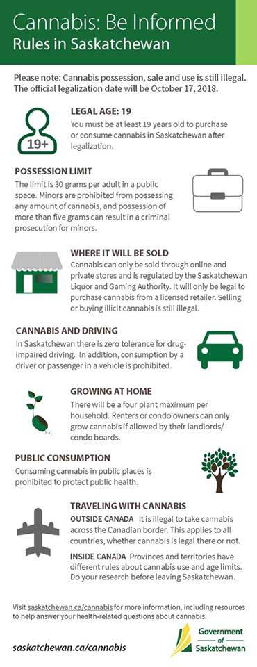 Cannabis Info Sheet